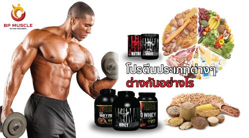 ประเภทของโปรตีนและความเชื่อผิดๆเกี่ยวกับโปรตีน