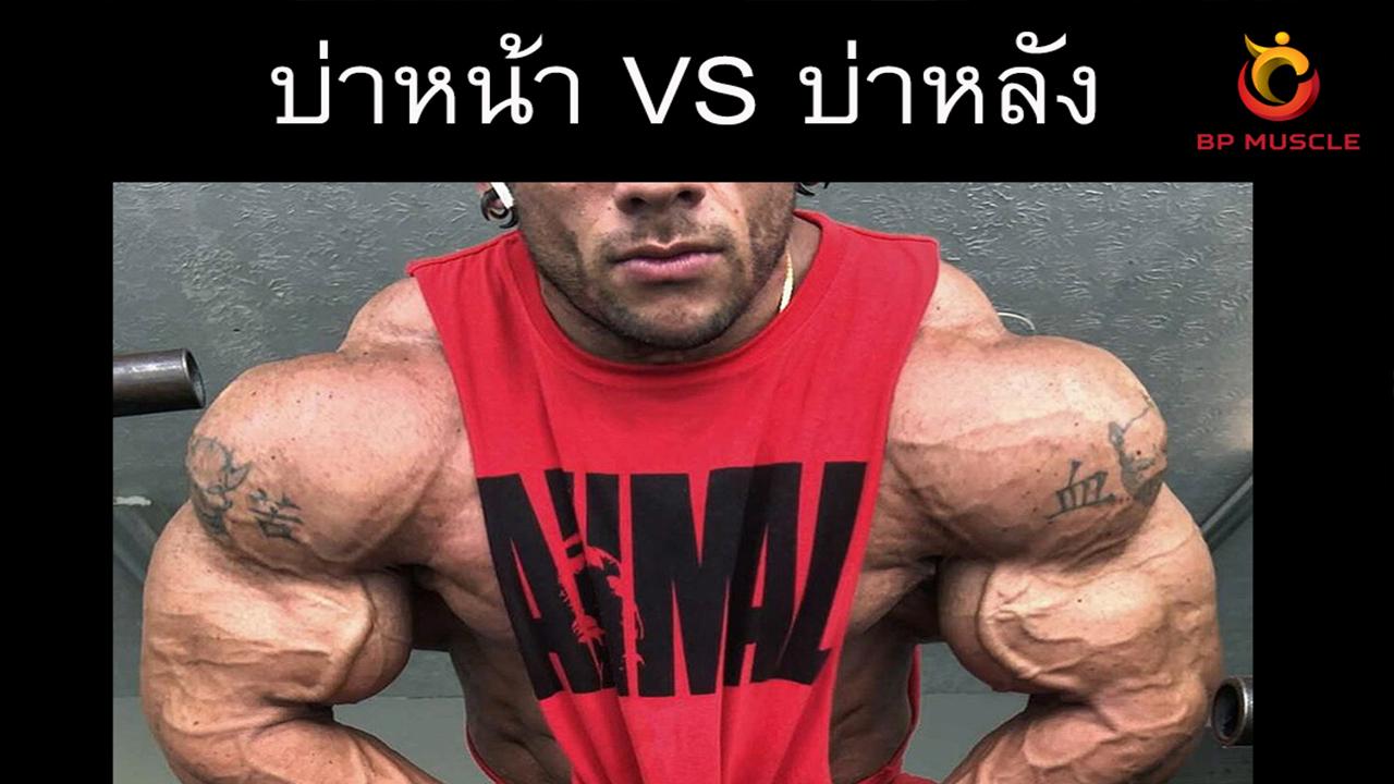 บ่าหน้า VS บ่าหลัง / Front shrugs vs Back shrugs